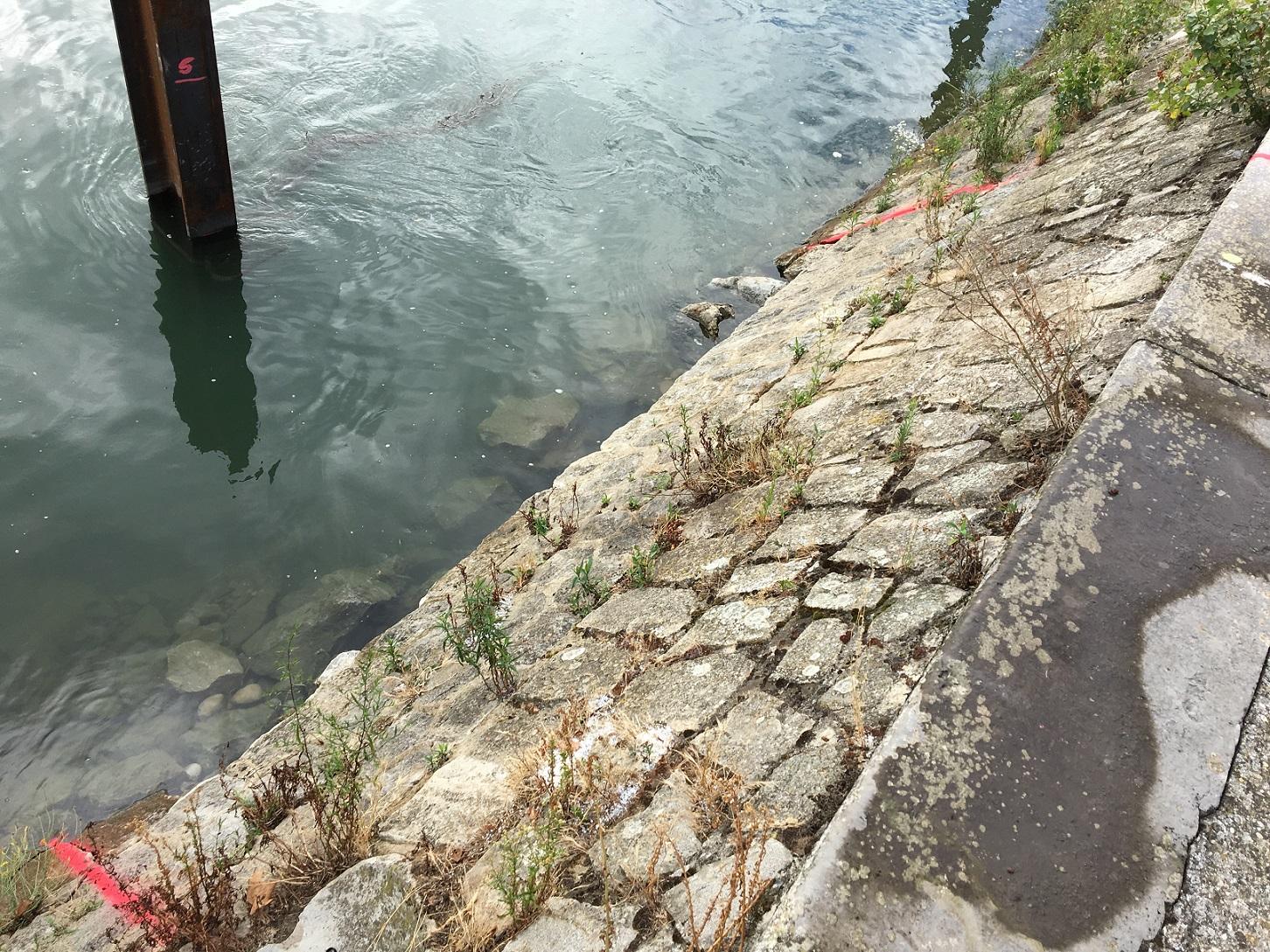 Travaux subaquatiques - Réparation de Génie Civil